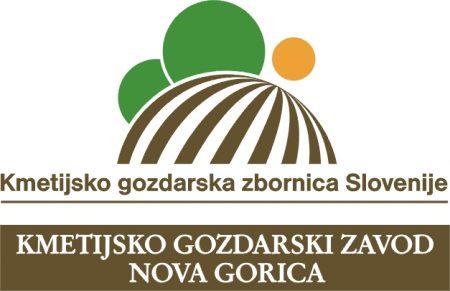 kgzng logo